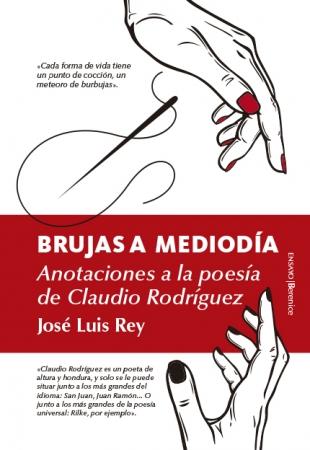 Portada del libro Brujas a mediodía. Anotaciones a la poesía de Claudio Rodríguez